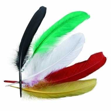 Gekleurde indianenveren carnavalskleding valkenswaard