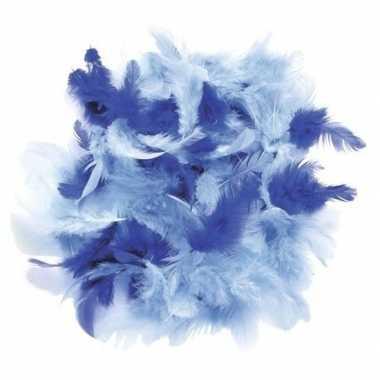 Gram decoratie sierveren blauw tinten carnavalskleding valkenswaard