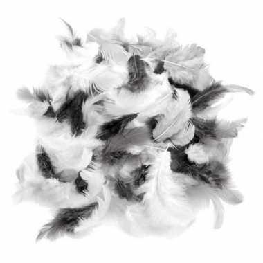 Gram decoratie sierveren grijs tinten carnavalskleding valkenswaard