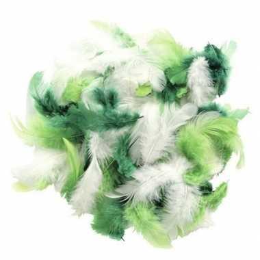 Gram decoratie sierveren groen tinten carnavalskleding valkenswaard