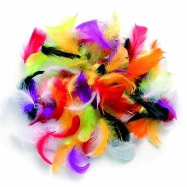 Gram decoratie sierveren kleuren mix carnavalskleding valkenswaard