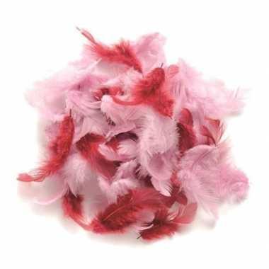 Gram decoratie veren roze tinten carnavalskleding valkenswaard