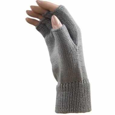 Verkleed licht grijze handschoenen vingerloos volwassenen carnavalskl