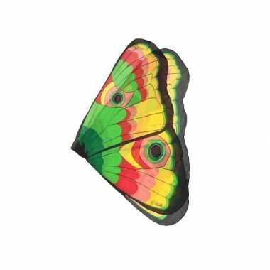 Vlinder vleugels gekleurd kids carnavalskleding Valkenswaard