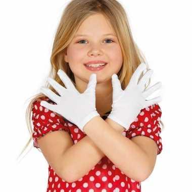 Witte verkleed handschoenen kinderen carnavalskleding valkenswaard