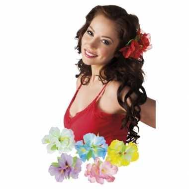 X stuks hawaii haarbloemen clip carnavalskleding valkenswaard