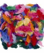 Decoratie veren gekleurd gram