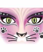 Dieren gezicht sticker poes katten
