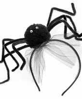Haarbanden zwarte spin