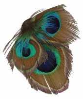 Haarbloem veertjes groen blauw