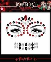 Rode zwarte day of the dead sugar skull make up steentjes set