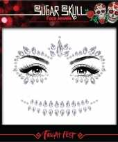 Zilveren day of the dead sugar skull make up steentjes set